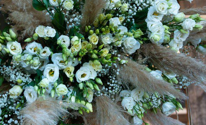 Lisianthus-Flower-Bazar